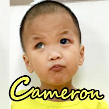 cameron-web