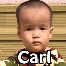 carl-web