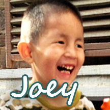 joey-web