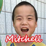 mitchell-web